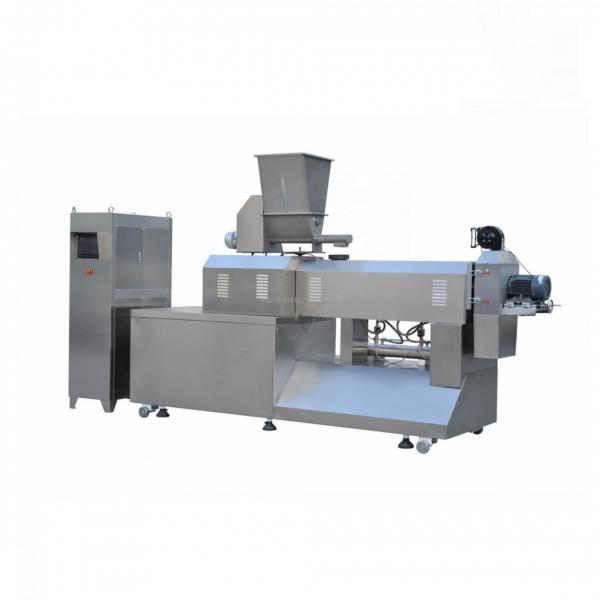 China Jinan City Corn Flakes Food Processing Extruding Machine