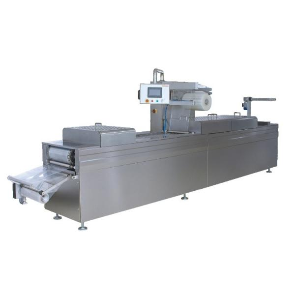 Energy Saving and Commercial Microwave Heating Lunch Machine for Sale