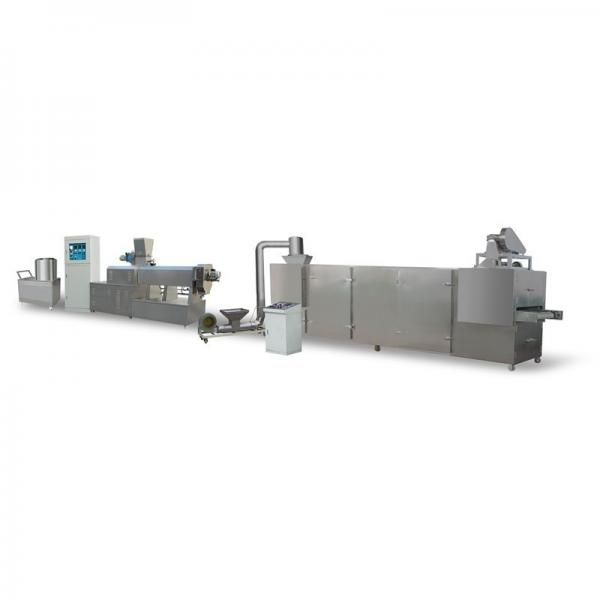 Stainless Steel Fruit Washer Machine Vegetable Cleaner