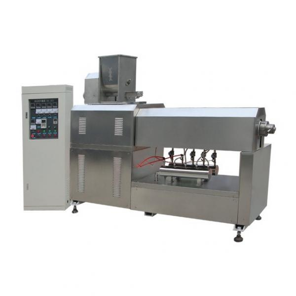 Manufacture Full Automatic Twin Screw Modified Starch Processing Equipment Price