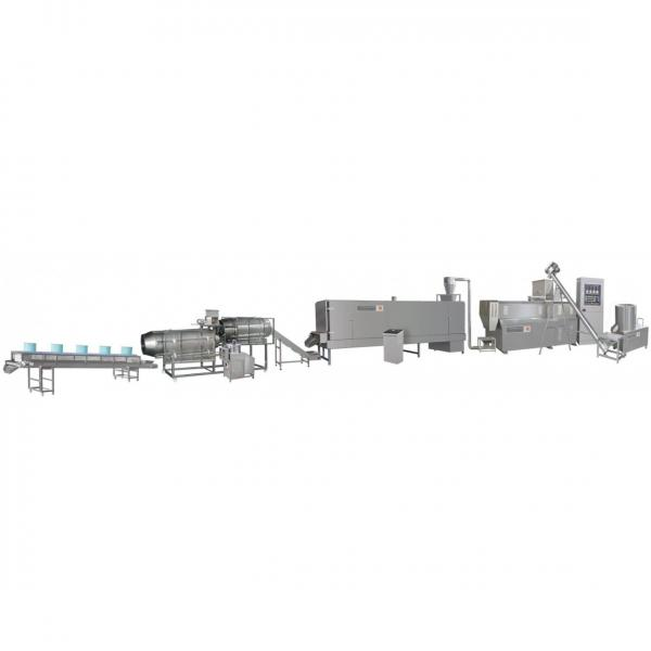 Breakfast Cereal Corn Flakes Equipment Cereals Process Machines