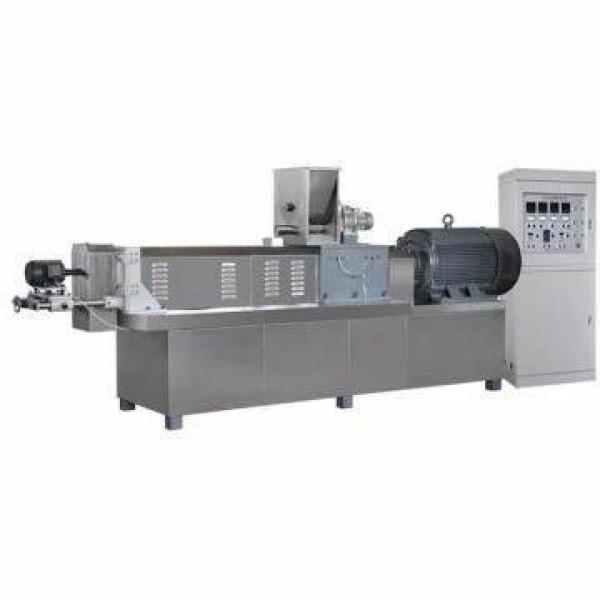China Good Commercial Vegetable Washer / Basket Vegetables and Fruit Washing Machine for Wood Engraving Cutting