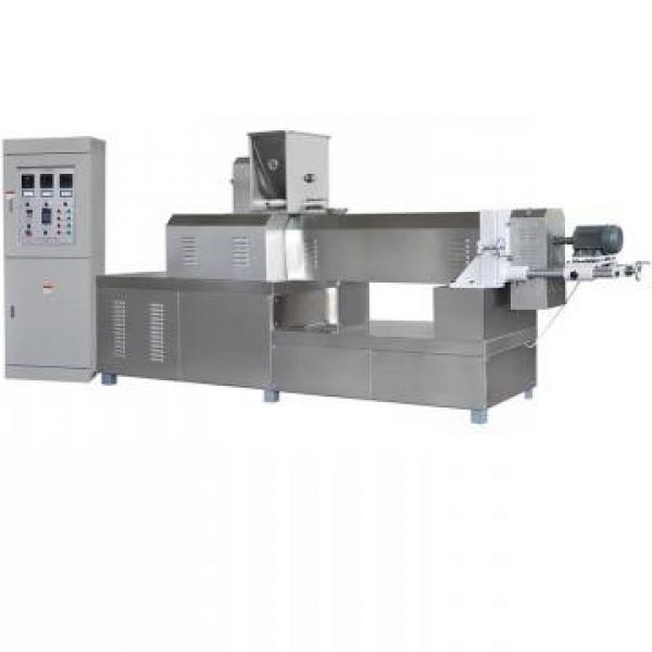 Vacuum Drying Equipment for Coconut Cream