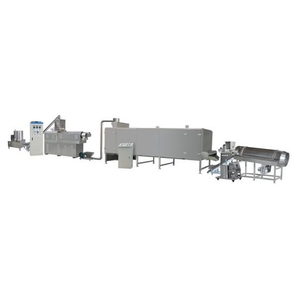 Automatic Electric Meat Vegetable Frozen Food Washing and Thawing Machine