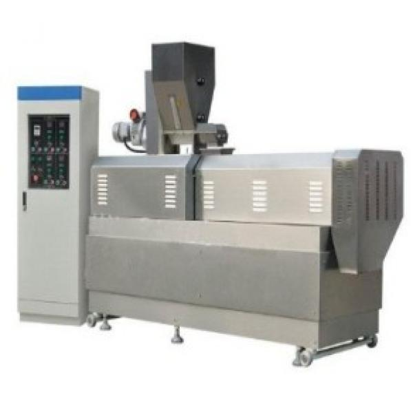 Apple Vacuum Drying Equipment for Food Process/Processing Industry